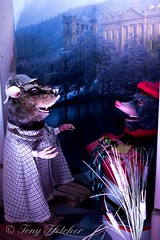 'CHRISTMAS AT CHATSWORTH' - 'WIND IN THE WILLOWS THEME' - 2015  - NIKON D3300