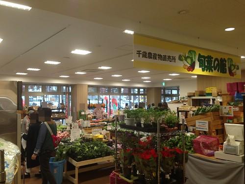 hokkaido-michinoeki-salmonpark-chitose-direct-sale-store