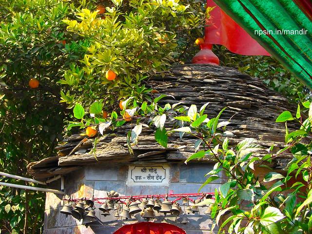 Shri Golu Haru - Swim Dev Mandir with Beautiful Greenery