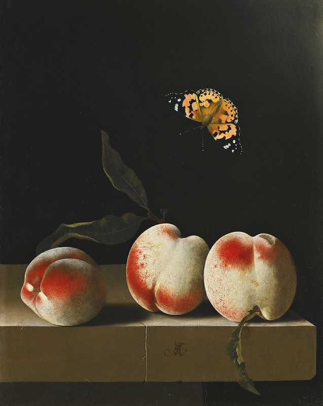 Adriaen Coorte - Three peaches on a stone ledge with a Red Admiral butterfly