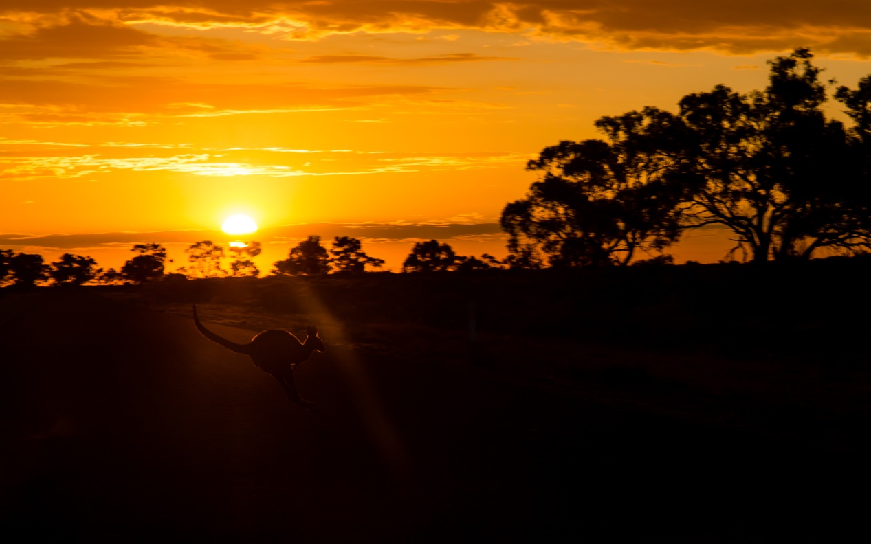 outback broken hill wilcannia