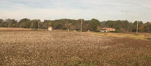 northcarolina farmlife amtrakviews