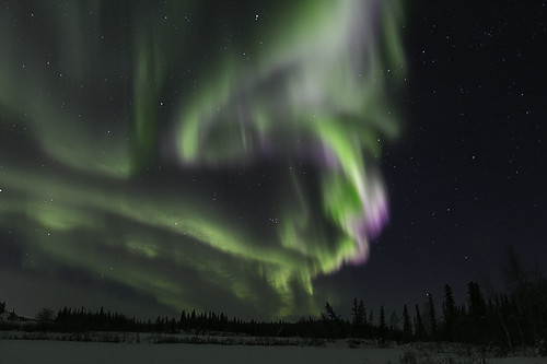 Aurora Feb 8, 2016-9183