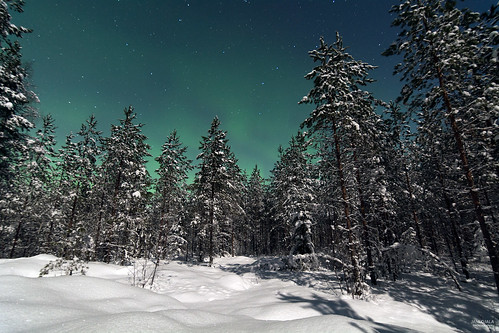 Moonlight walk with auroras