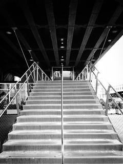 Image of The High Line. newyorkcity usa newyork america us unitedstates manhattan unitedstatesofamerica highline iphone 美國 thestates 紐約 紐約市 曼哈頓 highlinepark thecityofnewyork 美利堅合眾國 高線公園 空中鐵道公園 高架公園