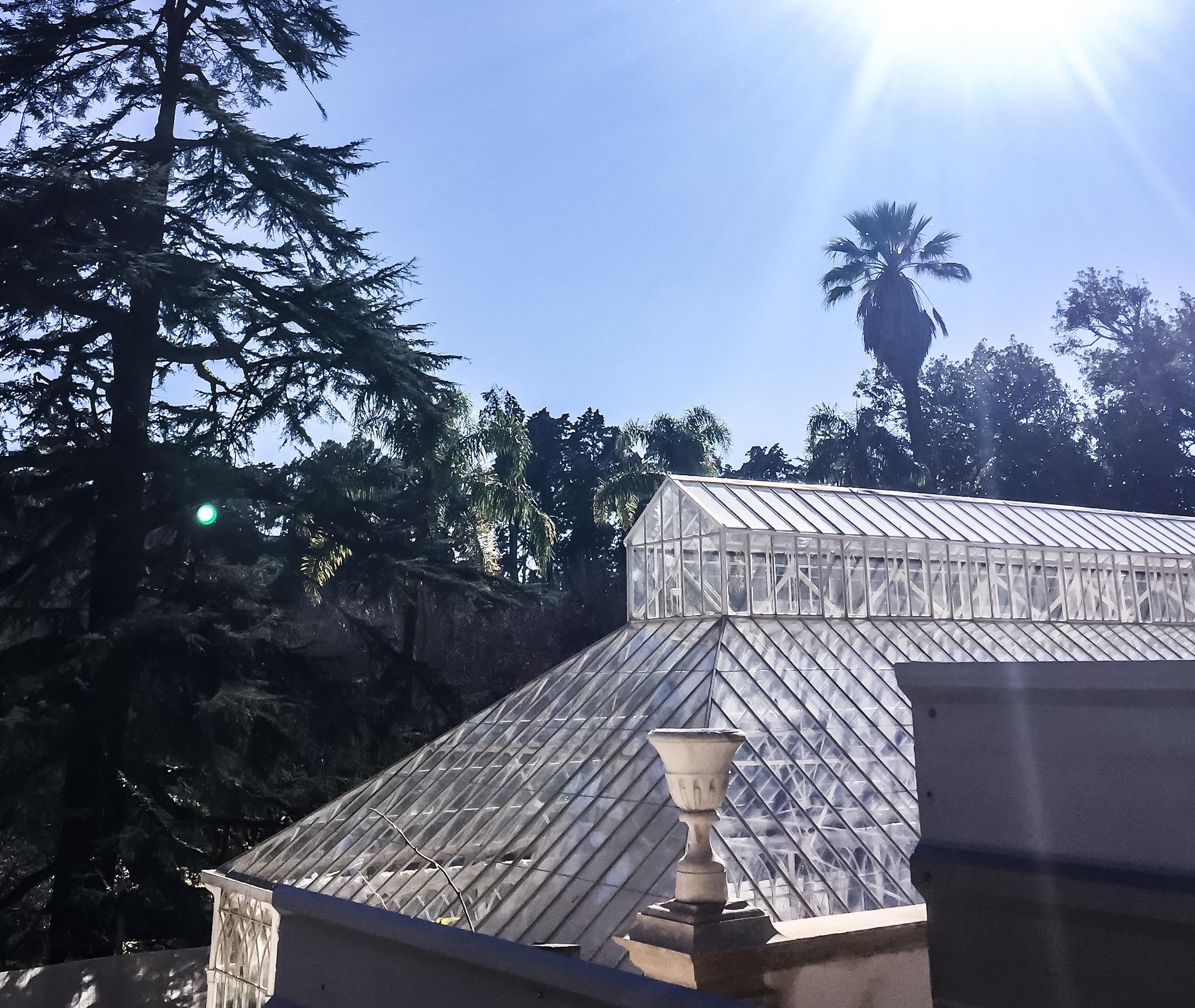6 on 6 - Lugares que Gostamos - Coimbra, Jardim Botânico