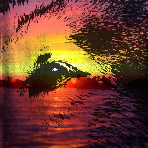 Digital collage - wolf