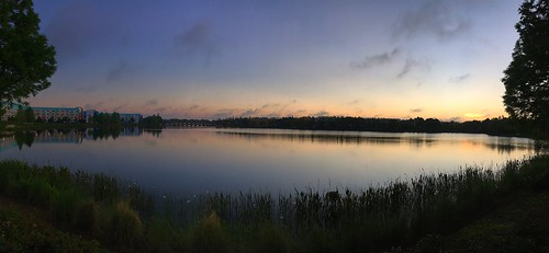 morning trees sky sunlight lake water clouds sunrise reflections pano scenic panoramic disney disneyworld wdw waltdisneyworld panaramic panaroma centralflorida iphonecamera disneyspopcenturyresort hourglasslake disneysartofanimationresort chadsparkesphotography appleiphonese