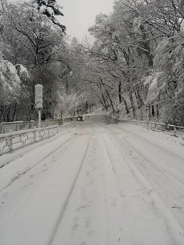 雪20160118_081006.jpg