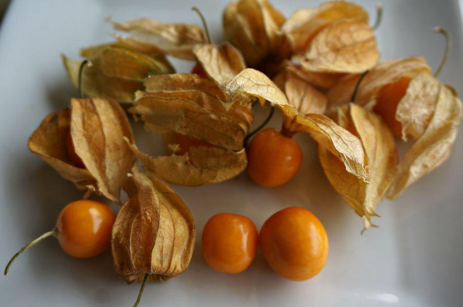 Peruvian Ground Cherries