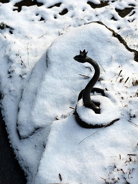 Schlange im Schnee
