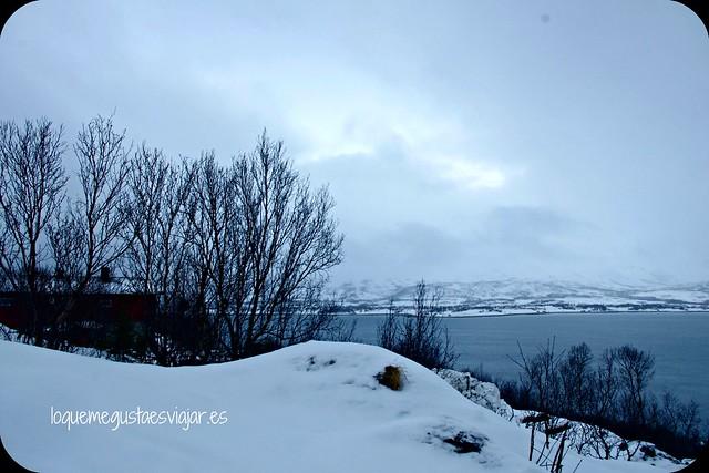 Tromso17