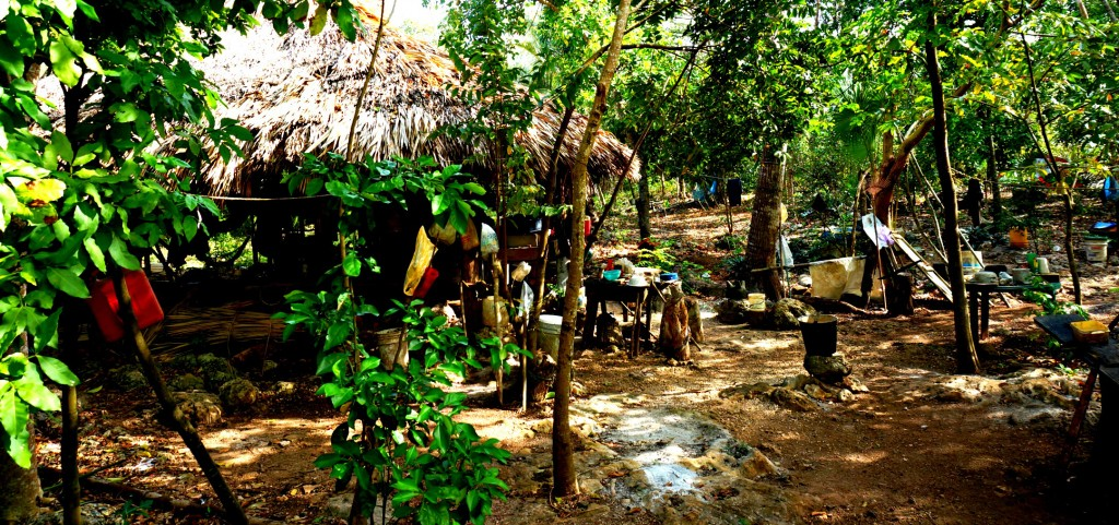 Mayan Jungle Work Camp