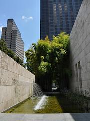 Dallas - Artificial Bamboo Forest