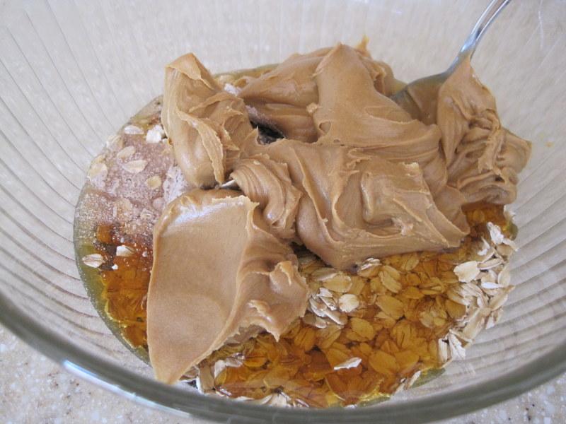Shaklee Protein Bites (1)