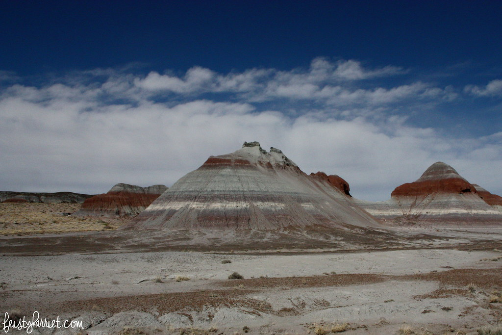 Petrified Forest NP 5_feistyharriet_March 2016
