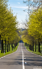 Perspective routière - Etampes - Essonne (1)