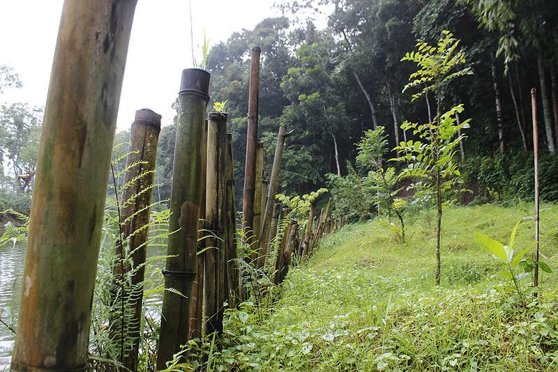 Main di Malang - Andeman - Pasak Bambu
