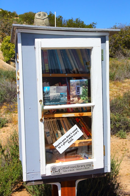 IMG_2881 Pacific Crest Trail Mile 145