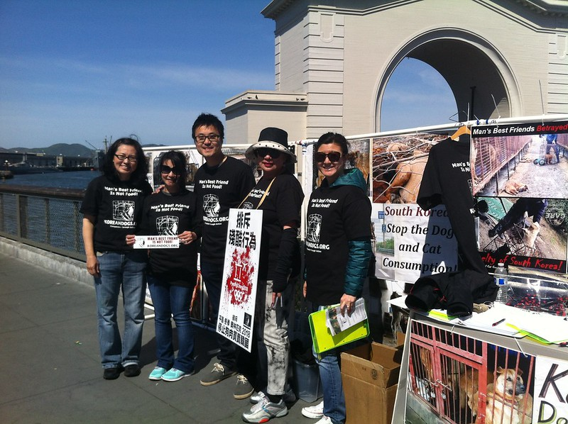 Leafleting and Informational Event on South Korean Dog Meat Trade – March 27, 2016 – San Francisco, Fisherman's Wharf