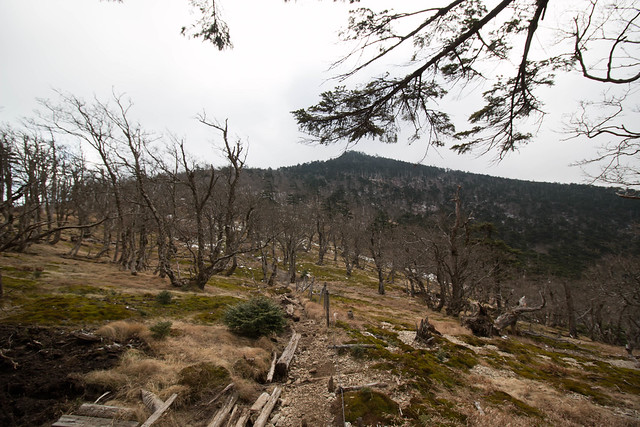 20141123-大峰山-0213.jpg