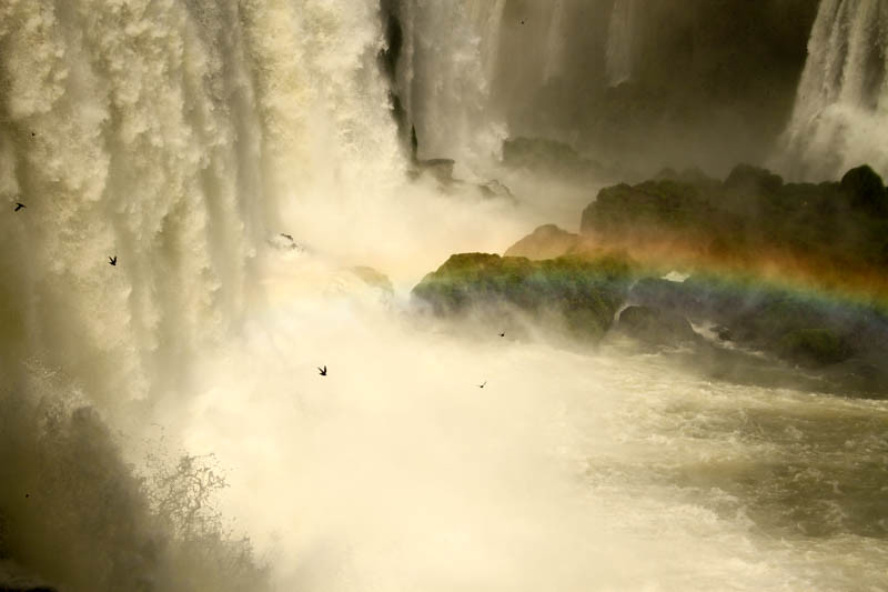 cataratas-iguazu-lado-brasil-2945