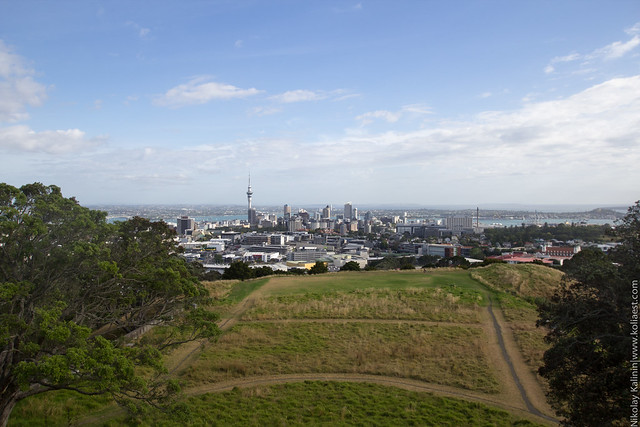 NZ_18-11