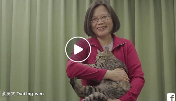 tsai-ing-wen-cat