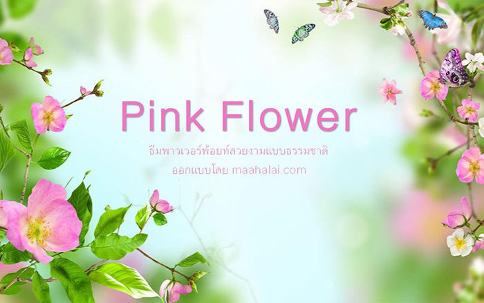 PowerPoint Flower Pink