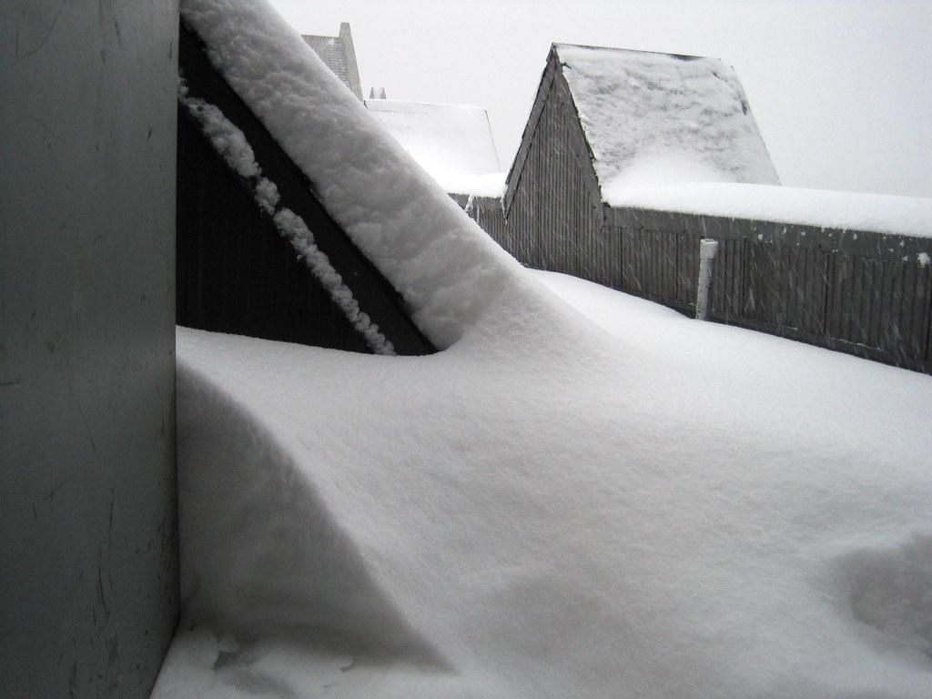 blizzard stock