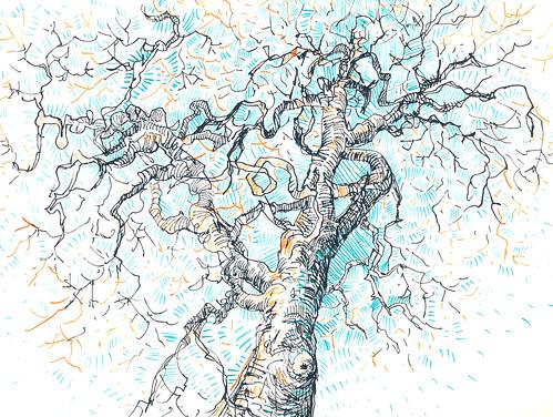 Sketchbook #94: Winter Trees