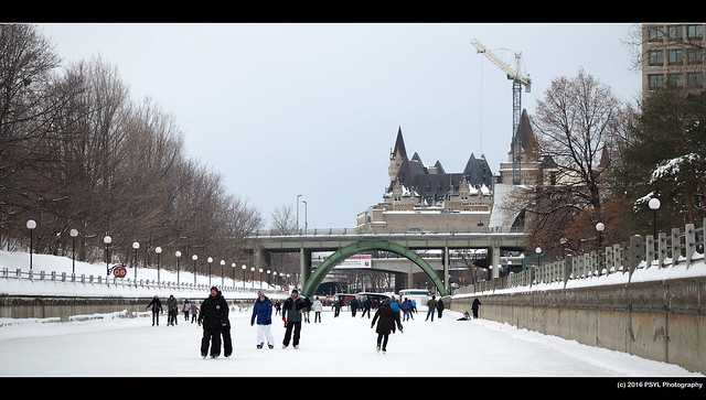 Skaters on Rideau