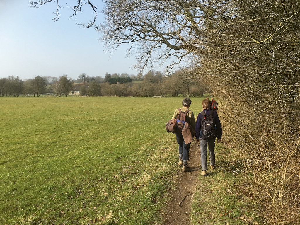 In the afternoon Tonbridge to Penshurst walk