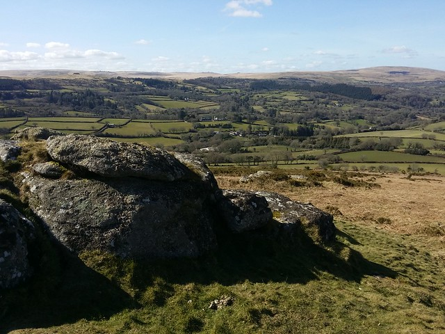 North Moor from Meldon Hill