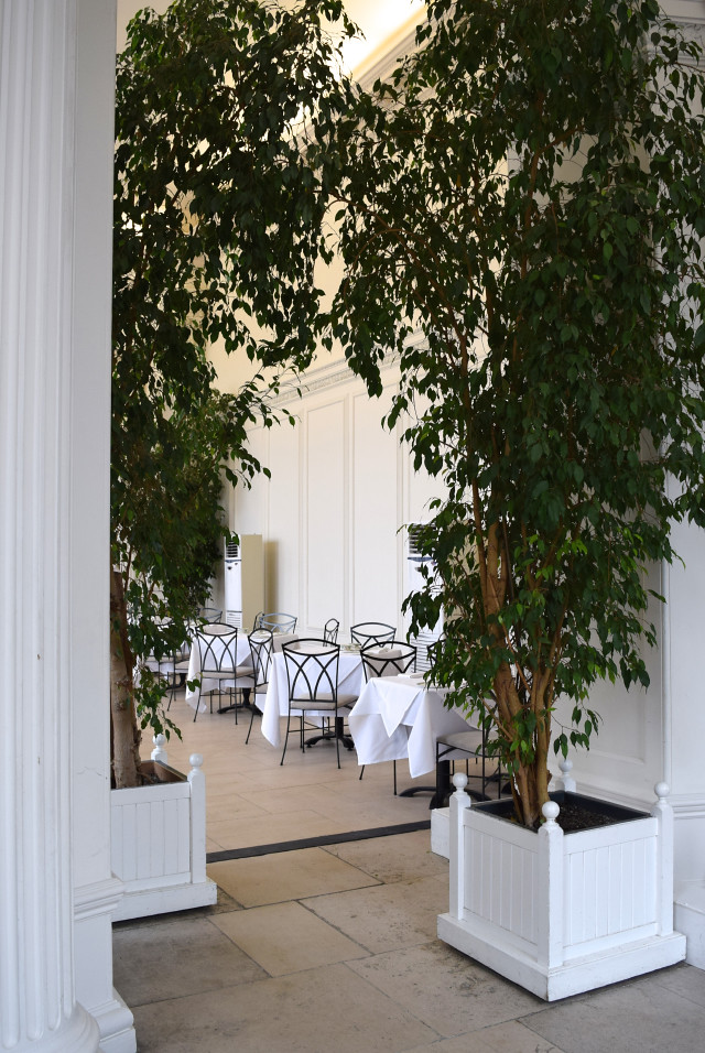 The Orangery, Kensington | www.rachelphipps.com @rachelphipps