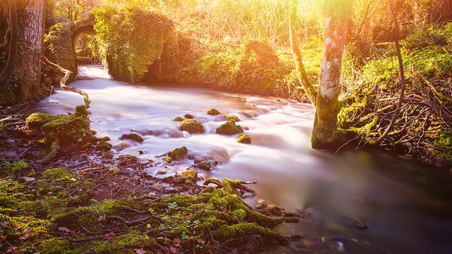 Ward River, Knocksedan