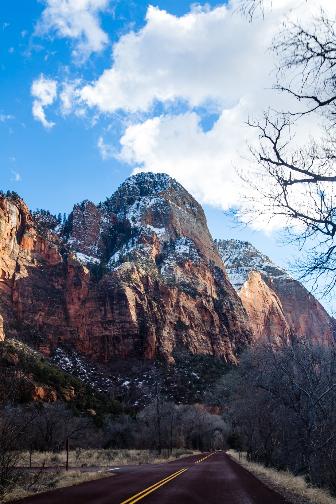 Zion National Park-9443-2