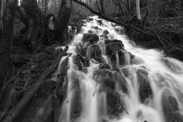 Variation noir et blanc de l'amont de l'affluent rive gauche du Bief de Vaux