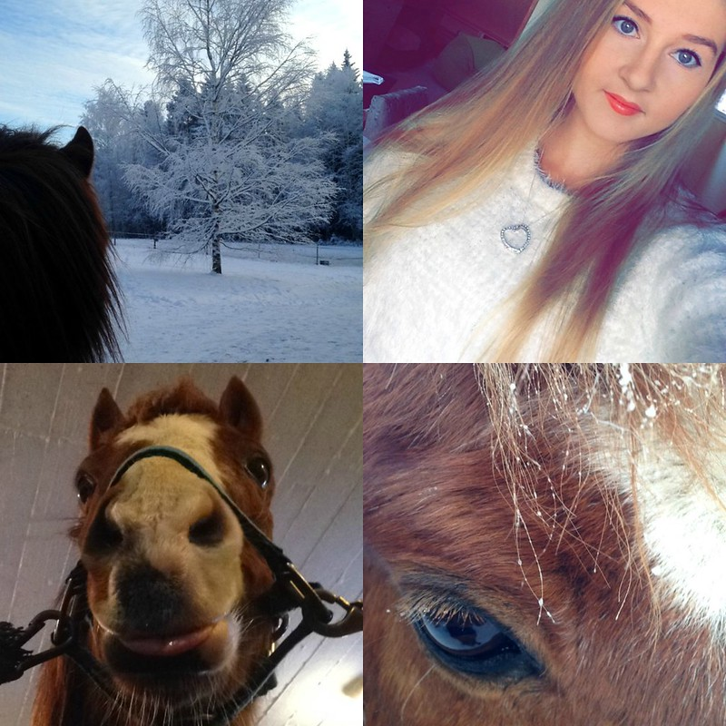 PicMonkey Collage-2