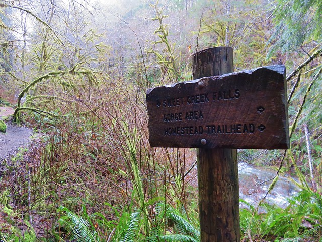 Trail sign along the Sweet Creek Trail