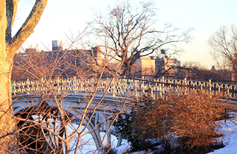 bridge central park new-york