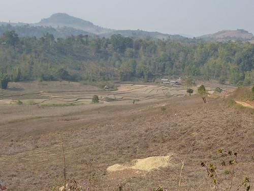M16-Kyaukme-Palaung-Lwe Sar (3)