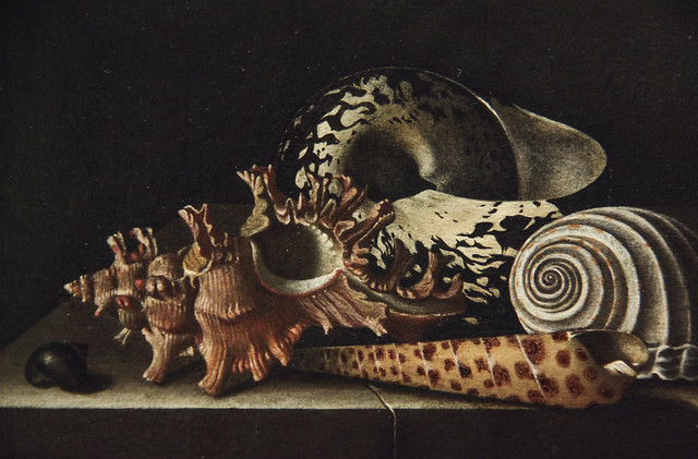 Shells on a Stone Plinth, Adriaen Coorte, 1698