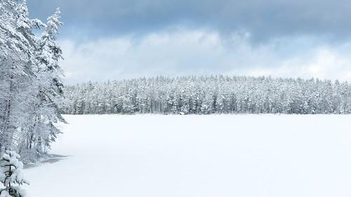 winter sky lake snow pine forest espoo finland geotagged nationalpark february fin 2016 uusimaa nyland esbo velskola ruuhijärvi nuuksionationalpark nuuksionkansallispuisto 201602 vällskog 20160213 geo:lat=6031014907 geo:lon=2457289697