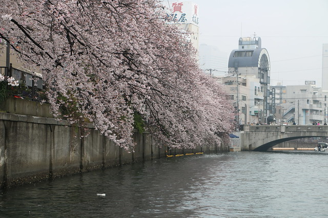 ヤマハ シースタイル ボート 木更津 横浜 羽田 桜