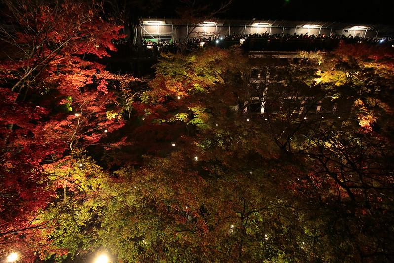 20141122-武奈ヶ岳&京都ライトアップ-0787.jpg