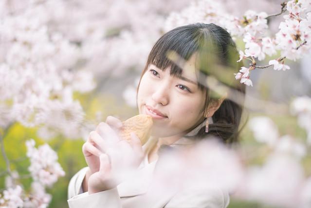 満開の桜でポートレート撮影