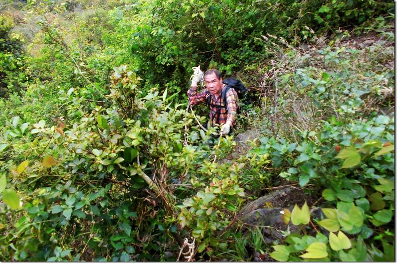 攀登垂直岩壁區 3