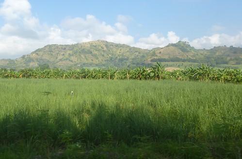 P16-Negros-San Carlos-Dumaguete-Route (3)