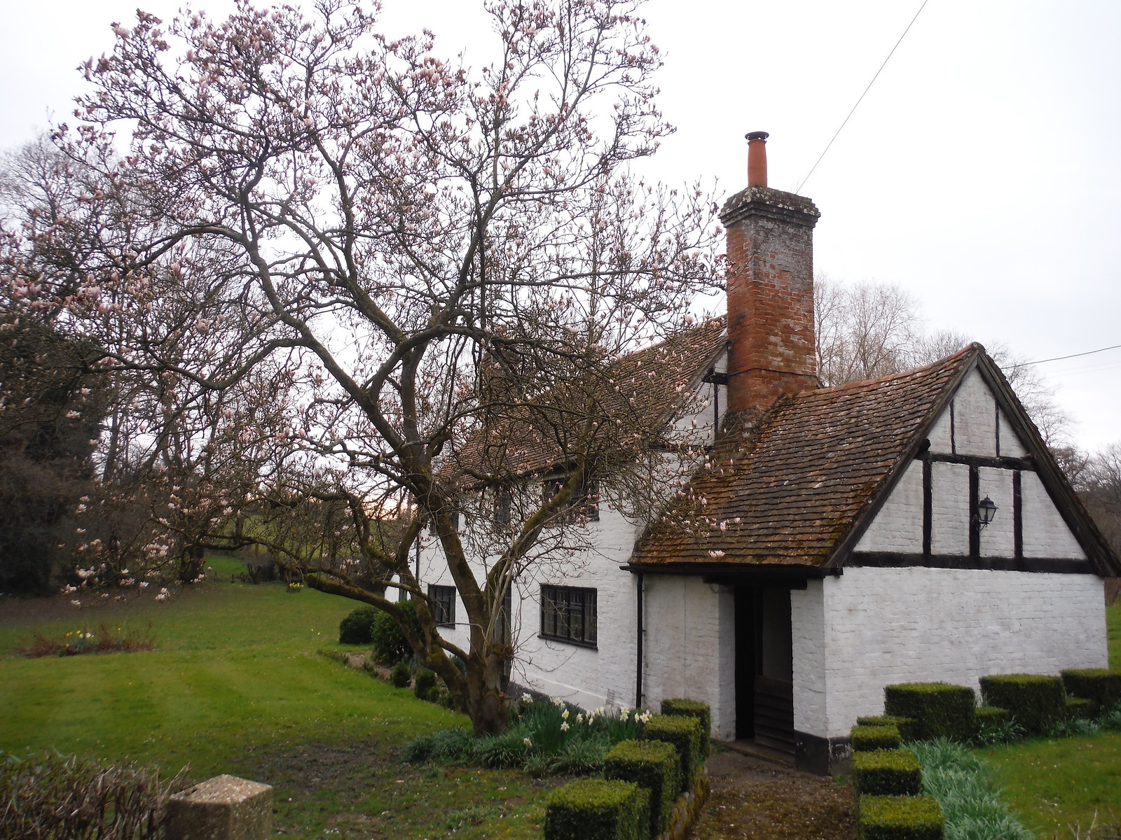 Cottage in Midgham SWC Walk 260 Aldermaston to Woolhampton [Midgham Station] (via Frilsham)